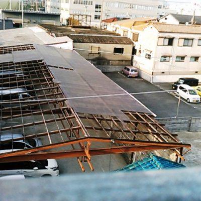 ホウレンソウで日本を憂う